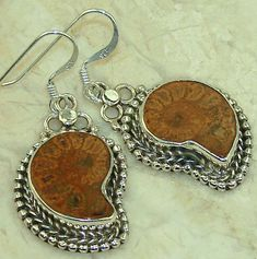 Ammonite Fossil Sterling Silver Earrings On Sale Free Delivery