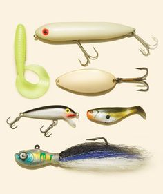 Best Lures - The Only 6 Baits You Need to Catch (Almost) Any Fish -Posted on January 31, 2014