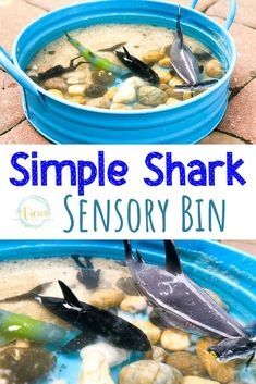 A simple shark sensory bin that uses rocks, sand and water to create a natural water play sensory bin with a shark theme for kids.