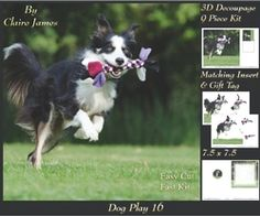 Furry Friends   Familiars   Dog Play 16   Decoupage   Insert   Tag on Craftsuprint - View Now!