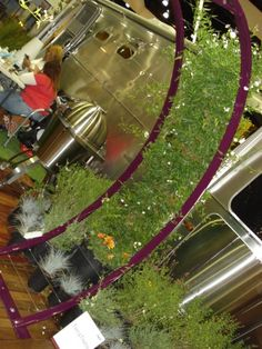 Love this Terra Trellis! Dwell On Design, Trellis, Garden, Garten, Lawn And Garden, Gardens, Gardening, Outdoor, Yard
