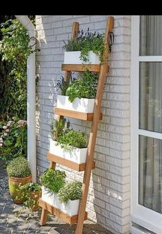Landscape Gardening Limerick each Small Backyard Garden Design Ideas Vertical Plant Wall, Vertical Garden Design, Vegetable Garden Design, Small Garden Design, Vertical Gardens, Vegetable Gardening, Organic Gardening, Jardim Vertical Diy, Garden Planters