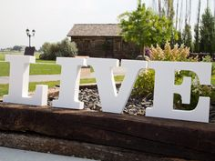 Standing foam letters with garden spikes, perfect for parties! CraftCuts.com