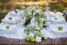 green tomatoes, cotton, green apples and perennials - how interesting!