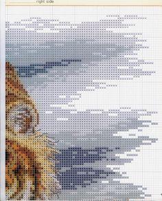 BONITO-TIGRE-4.jpg (595×740)