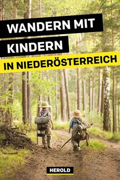 Austria, Travel Inspiration, Germany, Around The Worlds, Explore, Vienna, Switzerland, Places, Wanderlust