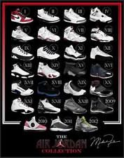 945245ab33cde9 TY02674 Michael Jordan Nike Air Jordan Brand Hot Canvas Big 14