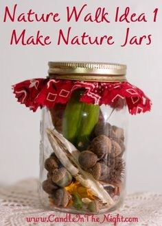 Fun ideas for taking nature walks and for displaying your findings! | candleinthenight.com