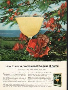 """1962 PUERTO RICAN RUM vintage magazine advertisement """"a professional Daiquiri"""" ~ How to mix a professional Daiquiri at home (with today's dry, white Puerto Rican rum) - Flamboyan flowers almost everywhere in Puerto Rico make it a glorious place to sip a Daiquiri. John Stewart photograph.  ~ Size: The dimensions of the full-page advertisement are approximately 8.25 inches x 11 inches (21 cm x 28 cm). Condition: This original vintage full-page advertisement is in Excellent Condition unless ..."""
