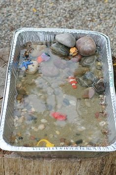 Tide Pool Science Experiment for Kids Science for kids: Learning about the tides Beach Themed Crafts, Beach Crafts, Diy Crafts, Preschool Science, Science For Kids, Science Toddlers, Earth Science, Easy Science Experiments, Science Projects