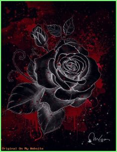 Black Wallpaper: Black Rose Art Print by Marine Loup:: Black wallpaper is an android app for phon… Black Roses Wallpaper, Gothic Wallpaper, Flower Wallpaper, Beautiful Rose Flowers, Black Flowers, Purple Roses, Rosen Tattoo Schwarz, Flower Backgrounds, Iphone Backgrounds