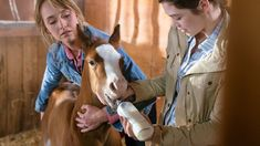 Sunday is Episode 1002; Time to PVR? - Heartland