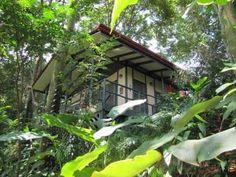 The quintessential jungle cabin, Casa Selva!
