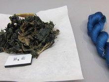 王朝のかさね色展に展示された、染織の原材料と染織した糸。隣の枯れた植物からできたとは思えないほど見事な青色。