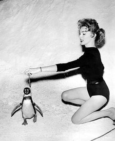 Joan Marshall feeds the penguins, - Born June 1931 Chicago, Illinois, U. Tap Shoes, Ballet Shoes, 50s Glamour, Claire Mccardell, The Woman In Black, Penguin Love, The Good Old Days, Popular Culture, Penguins