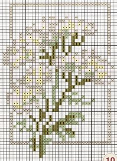 cross stitch chart - queen anne's lace