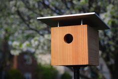 Cardinal Bird House Plans