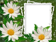 Free Digital Printable Transparent PNG Picture Frames, Borders for Photo, Scrapbooking and Clipart. Download Webka app for free.