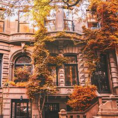 Autumn's finest accessories. New York City. Upper West Side. By... | New York City Feelings | Bloglovin'