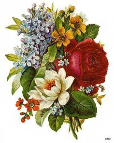 Vintage Bouquet Scrap ~ LAMINAS... Y TRABAJOS CON FLORES (pág. 184) | Aprender manualidades es facilisimo.com