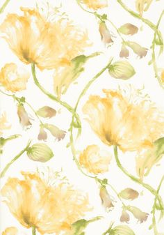Tuileries #wallpaper in #yellow from the Zola collection. #Thibaut #AnnaFrench
