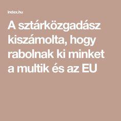 A sztárközgadász kiszámolta, hogy rabolnak ki minket a multik és az EU