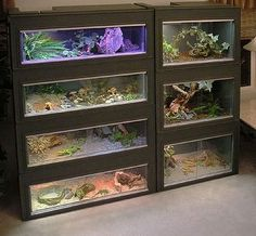 Perfect set up for ball pythons!