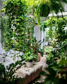Biophilic Architecture, Modern Architecture, Small Waterfall, Forest Art, Mental And Emotional Health, Open Window, Natural World, Natural Materials, Indoor Plants