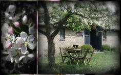 Voor een korte of lange vakantie in het voorjaar en genieten van een bloeiende boomgaard