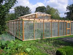 The Garden of Eaden: HOW TO PROTECT FRUIT FROM BIRDS. How cool would this be as a chicken run!