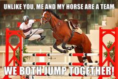 Haha - Horses Funny - Funny Horse Meme - - Haha The post Haha appeared first on Gag Dad. Funny Horse Memes, Funny Horse Pictures, Funny Horses, Cute Horses, Funny Animal Memes, Horse Love, Cute Funny Animals, Horse Humor, Horse Girl