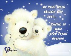 Teddy Bear, Humor, Animals, Animales, Animaux, Humour, Teddy Bears, Funny Photos, Animal