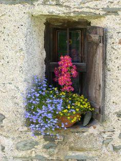 Everyone deserves a perfect world! Garden Windows, Old Windows, Windows And Doors, Balcony Garden, Vintage Windows, Antique Windows, Window View, Balcony Window, Window Dressings