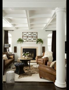 Transitional Living Room. Interior Design 2014