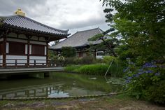 Was in Nara yesterday and visited the Hokke-ji Temple. They have a nice garden and a idyllic pond!
