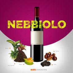 Los aromas de un Nebbiolo! Que tan deliciosa versión hay mexicano!