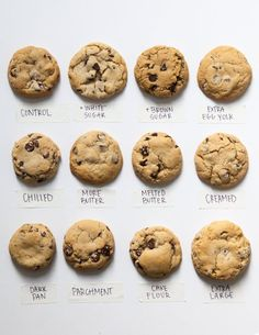 Baking School Day 17: Cookies — The Kitchn's Baking School