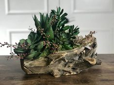 This Driftwood Succulent Floral Arrangement Faux Flowers is just one of the custom, handmade pieces you'll find in our floral arrangements shops. Succulent Wedding Centerpieces, Sunflower Centerpieces, Sunflower Arrangements, Orchid Arrangements, Succulent Arrangements, Tall Succulents, Succulents Drawing, Hanging Succulents, Driftwood Centerpiece