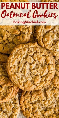 My favorite peanut butter cookies! Fantastic chewy, peanut-buttery Peanut Butter… My favorite peanut butter cookies! Fantastic chewy, peanut-buttery Peanut Butter Oatmeal Cookies that everyone will love, plus instructions for freezing the dough for later. Chocolate Chip Cookies, Oat Cookies, Healthy Cookies, Yummy Cookies, Oatmeal Peanut Butter Cookies, Easy Oatmeal Cookies, Peanut Butter Biscuits, Butterfinger Cookies, Cinnamon Cookies