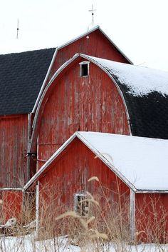 Country Winter with old red barns and snow Farm Barn, Old Farm, Country Barns, Country Life, Country Living, Country Roads, Barn Living, Country Kitchen, Gambrel Roof