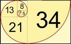 Image result for calculating fibonacci spiral on canvas