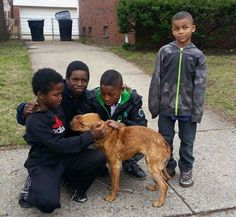 Animal rescuers start at a young age. Wonderful, kind boys, brought up to care…Update doggy found a home