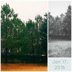 D R Simpson Gallery: January 17, 2016  #drsimpson #drsimpson365 #365project #ncwx #snow