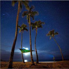 * Stingray tree tent