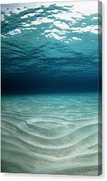 Sandy Sea Floor Canvas Print by Georgette Douwma