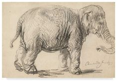Frameless canvas painting animal posters modern art decoration cartoon picture sketch drawing an elephant by Rembrandt Rembrandt Drawings, Rembrandt Paintings, Rembrandt Etchings, Artist Canvas, Canvas Art, Elephant Sketch, Elephant Drawings, Chalk Drawings, Museum