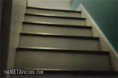 Pug jumping up the stairs…