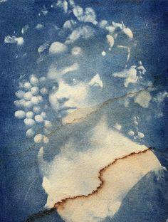 iconic <3 blue & white - Bacchante Cyanotype, damaged | Flickr