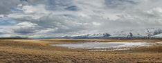 On My Way to Lake Pukaki - Mackenzie Country, Canterbury, New Zealand
