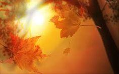 Resultado de imagen para otoño fondo